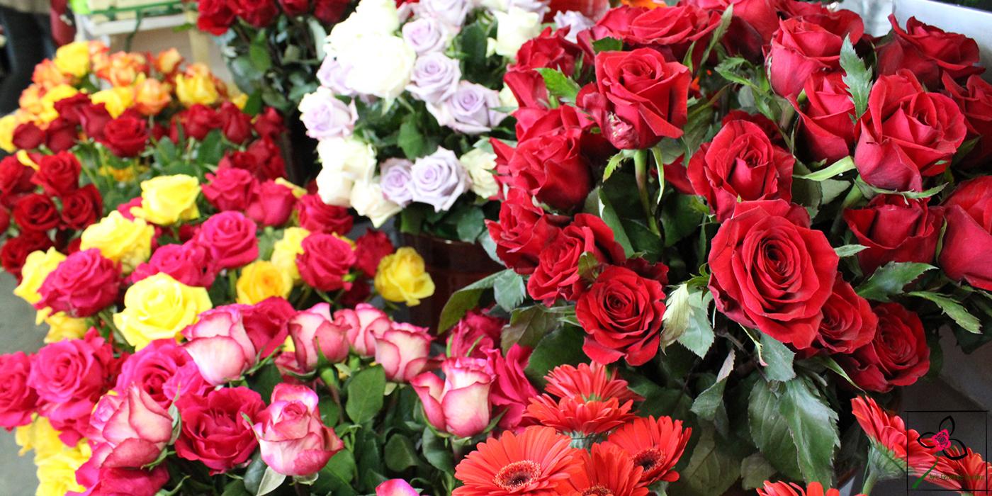 Vases de roses en mélange
