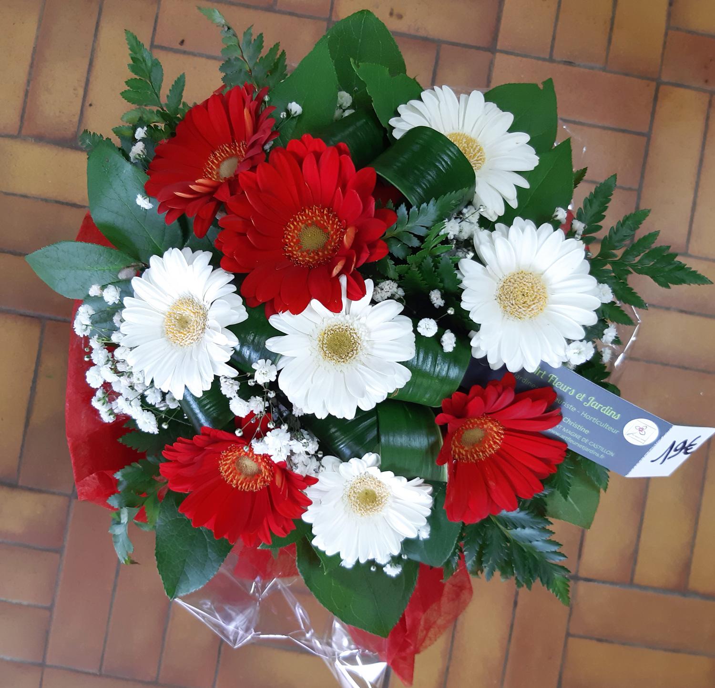 Bouquet de germinis rouges et blanc, accompagnés de gypsophile, dans une bulle